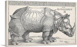 The Rhinoceros 1515