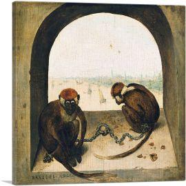 Two Monkeys 1564