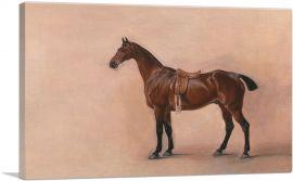 Study of a Saddled Bay Hunter 1828
