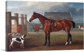 The Bay Hunter Gillingham Outside the Quorn Kennels 1836