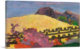 Parahi te Maras 1892