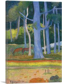 Paysage Aux Troncs Bleus 1892