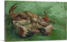 A Crab on its Back 1888