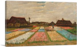 Flower Beds in Holland 1883