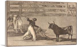 Origin of the Harpoons or Banderillas 1816