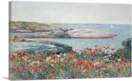 Poppies - Isles of Shoals - America 1891