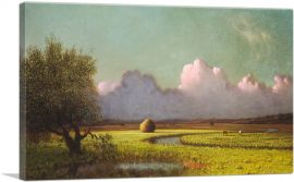 Sunlight and Shadow - The Newbury Marshes 1885