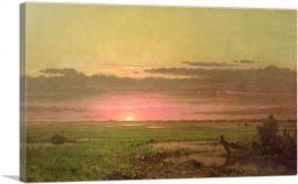 Sunset Marshland