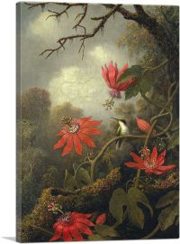 Hummingbird and Passionflowers 1885