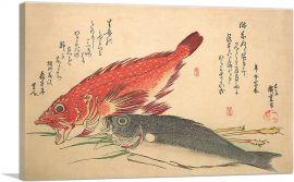 Isaki and Kasago Fish