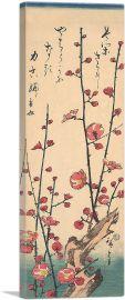 Red Blossom Plum 1847