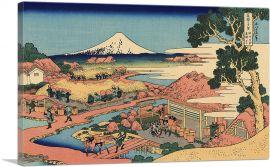 The Tea Plantation of Katakura in The Suruga Province