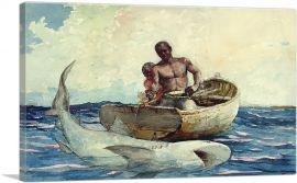Shark Fishing 1885