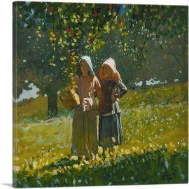 Apple Picking 1878