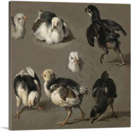 Seven Chicks