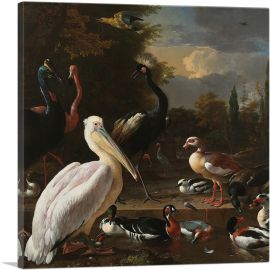A Pelican and Other Birds Near a Pool - The Floating Feather 1680