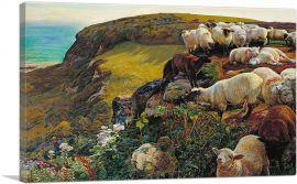 Our English Coasts 1852