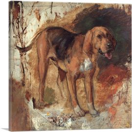 Study of a Bloodhound 1848