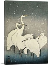 Five White Herons Standing in Water Under Snow