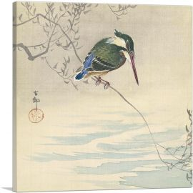 Kingfisher 1920