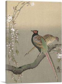 Two Pheasants On a Branch