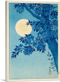 Blossoming Cherry on a Moonlit Night