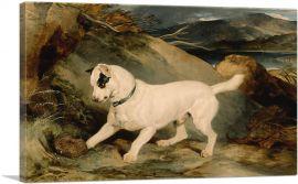 Portrait of a Terrier 1858