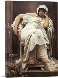 Faticida 1893