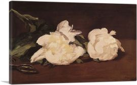 Still Life - Branch of White Peonies 1864