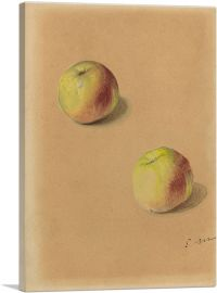 Two Apples 1880