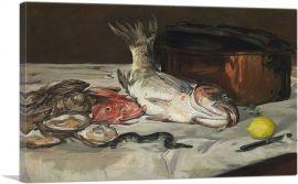 Fish 1864