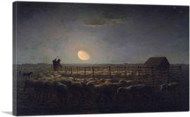 The Sheepfold - Moonlight