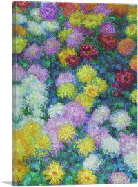Private Monet Chrysanthemums