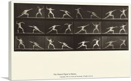 The Human Figure in Motion - Nude Men Fencing