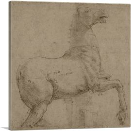 A Marble Horse on the Quirinal Hill 1513