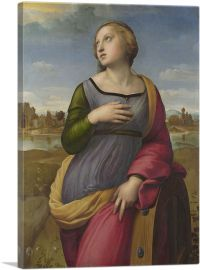 Saint Catherine of Alexandria 1507