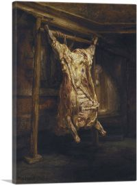Slaughtered Ox 1655