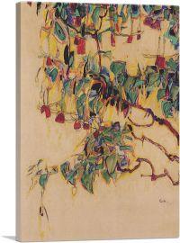 Fuchsia - Sonnenbaum 1910