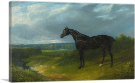 Black Hunter in a Landscape