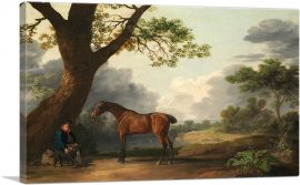 The Third Duke of Dorset's Hunter with a Groom and a Dog 1768