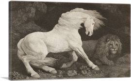 A Horse Affrighted at a Lion 1788